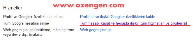 google-sil