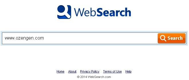 websearches temizleme