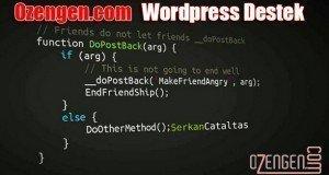 wordpress destek