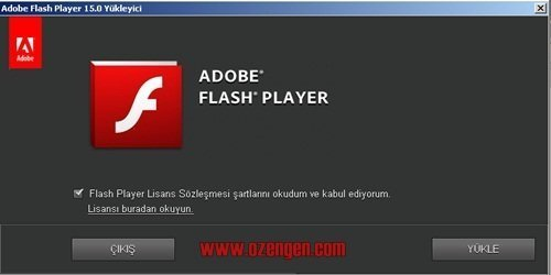 flash player 1