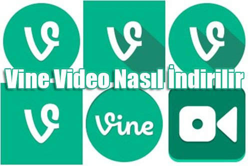 vine video indirme