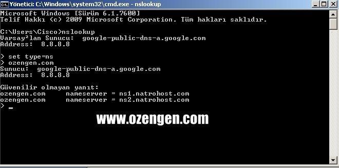 ozengen.com ns