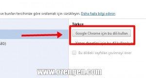 chrome turkce dil