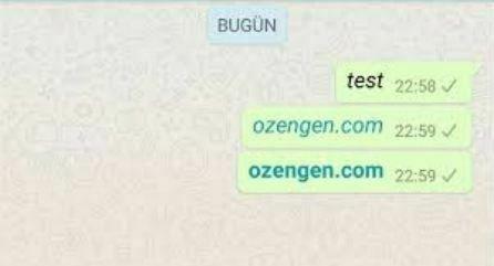 whatsapp kalin yazi