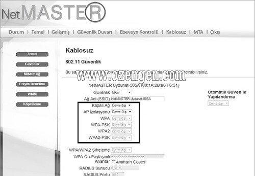 netmaster-uydunet-kurulumu-2