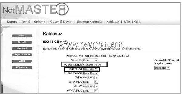 netmaster-uydunet-kurulumu-3