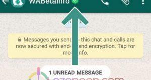 Whatsapp onayli hesap