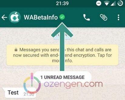 Whatsapp yeşil tik nedir