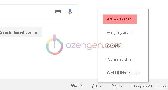 Google arama ayarlari